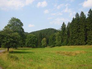 Photo aus dem Harz